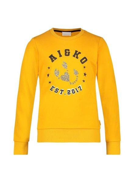 Ai&Ko Sweater BLIZZ CO 280 J