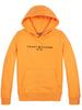 Tommy Hilfiger Tommy Hilfiger essential hoodie