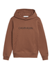 Calvin Klein Calvin Klein institutional logo hoodie
