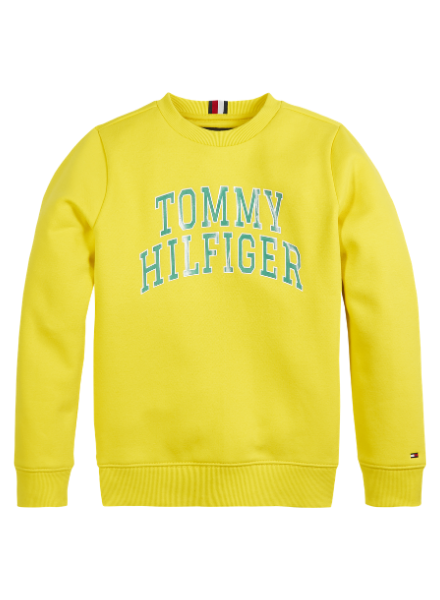 Tommy Hilfiger TH hilfiger artwork sweat