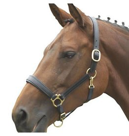 Shires Ragley Lined Leather Headcollar