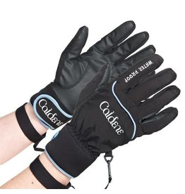 Caldene Waterproof Glove