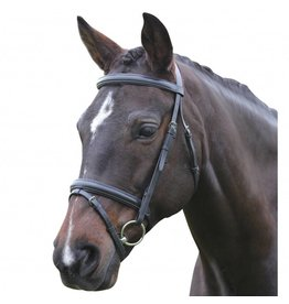 Kincade Kincade Flash Bridle