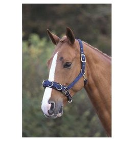 Shires Nylon Lunge Cavesson