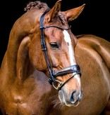 PS of Sweden Bridle All In