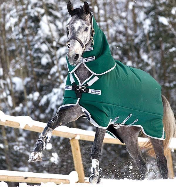 Paardendekens vaak te warm en daardoor oncomfortabel