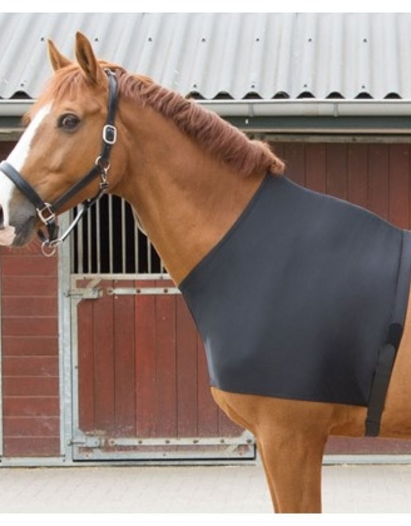 Harry Horse Borstbeschermer lycra