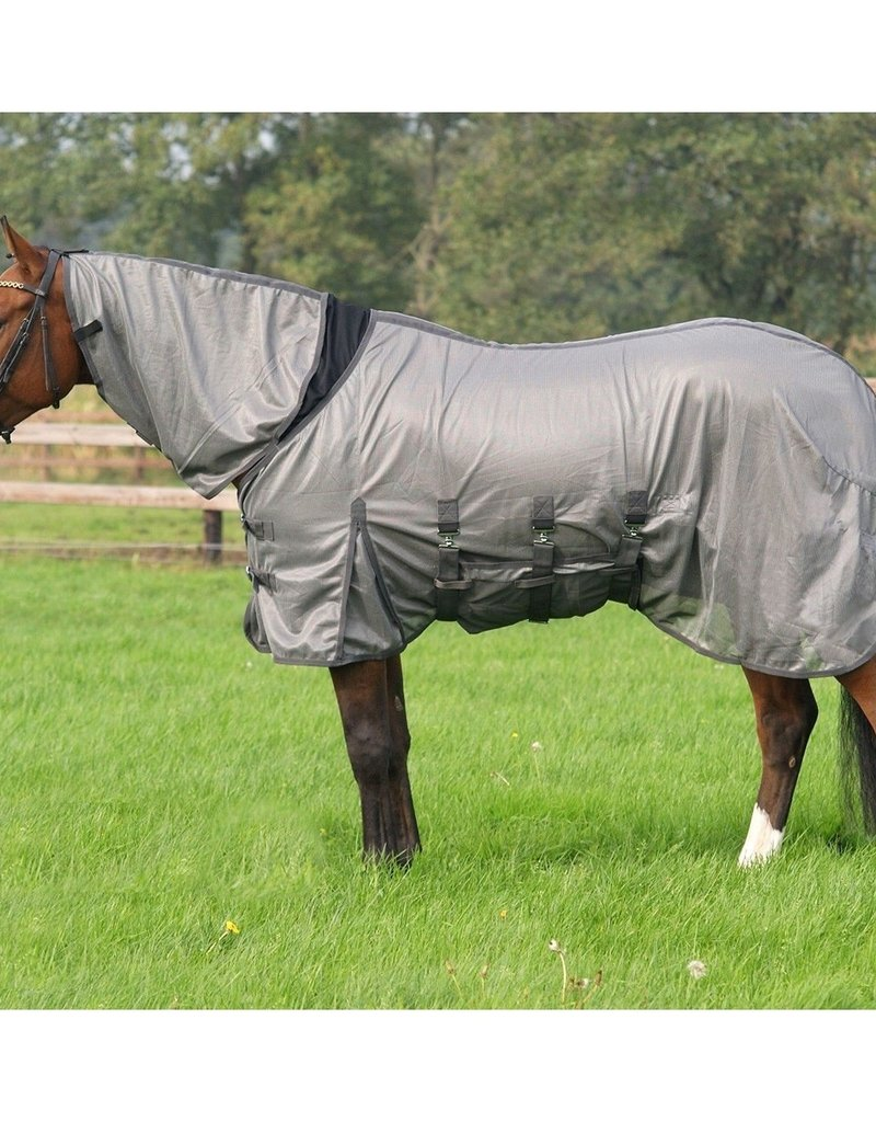 Qhp Fly Rug with Elasticized Neck