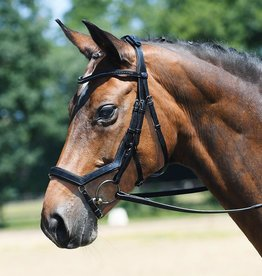 Busse Bridle feeling