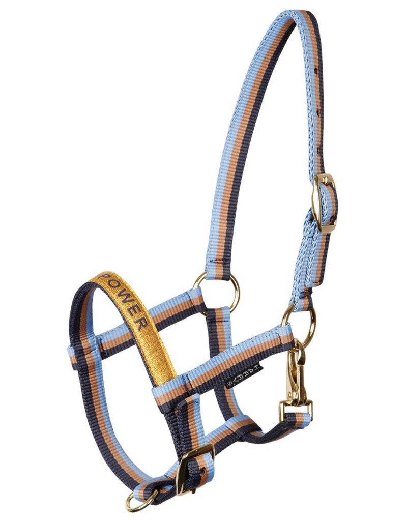 Harry Horse Foal head collar