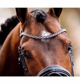 Show-time Browband Butterfly