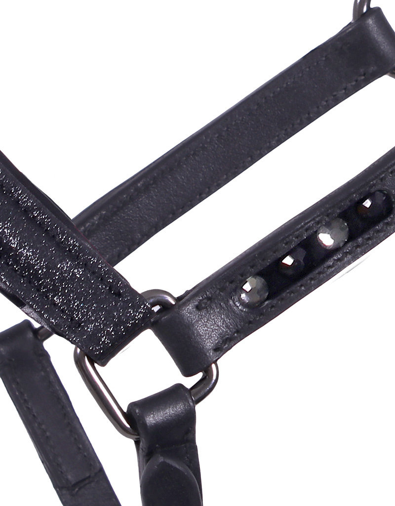 Qhp Halter foal leather with glitter