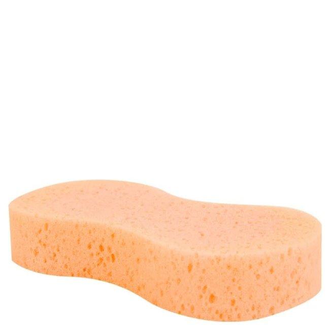 Premiere Magic sponge