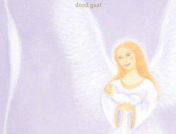 Boek Als een engel je komt halen