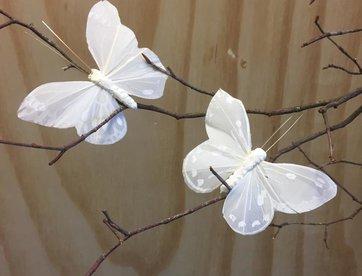 Vlindertjes - Wit
