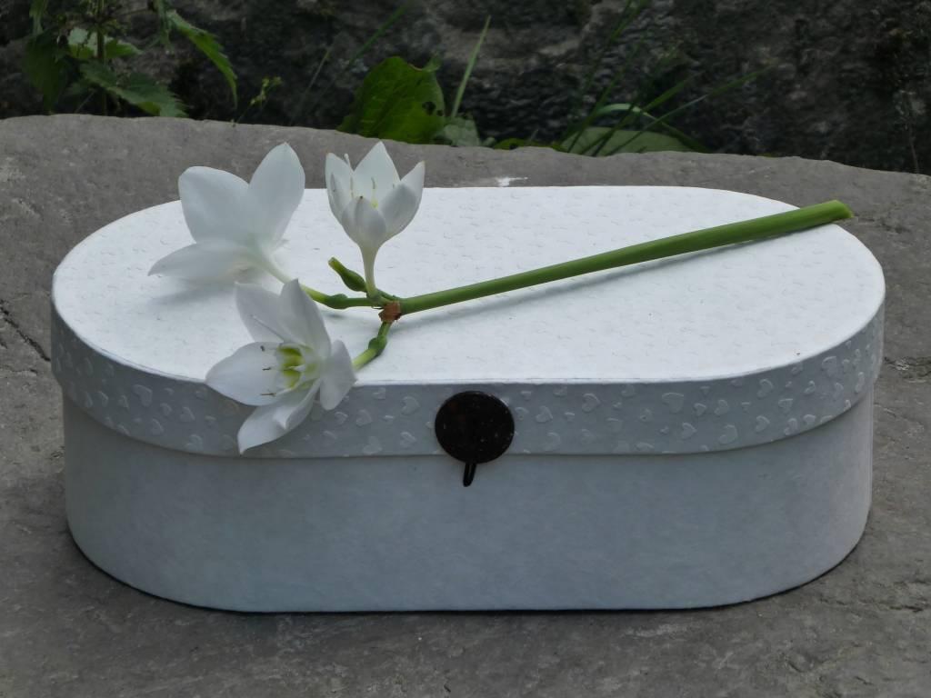 Afscheidsbox - Schermbloem
