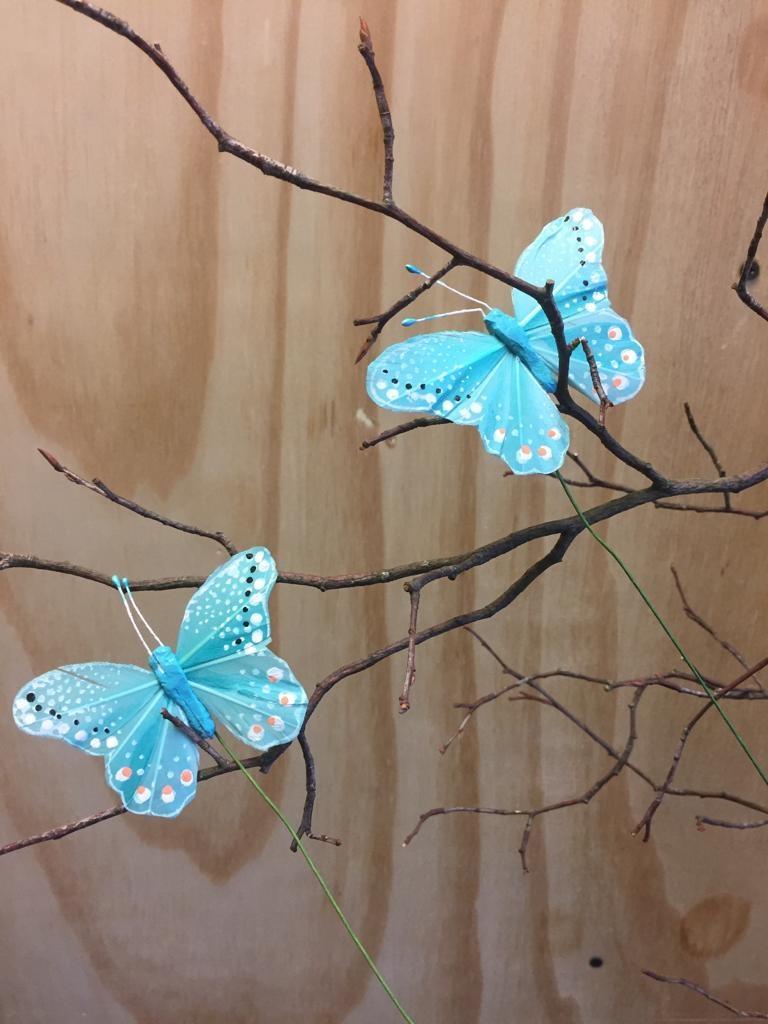 Vlindertje - Aqua