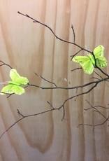 Vlindertje - Lichtgroen