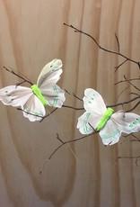 Vlindertjes - Zachtgroen