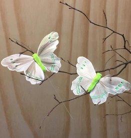 Vlindertjes -Zachtgroen