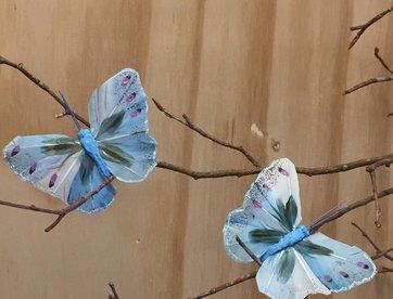 Vlindertje -Blauw
