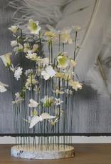 Vlindertuintje - wit