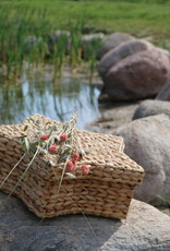 Ster waterhyacint Azalea