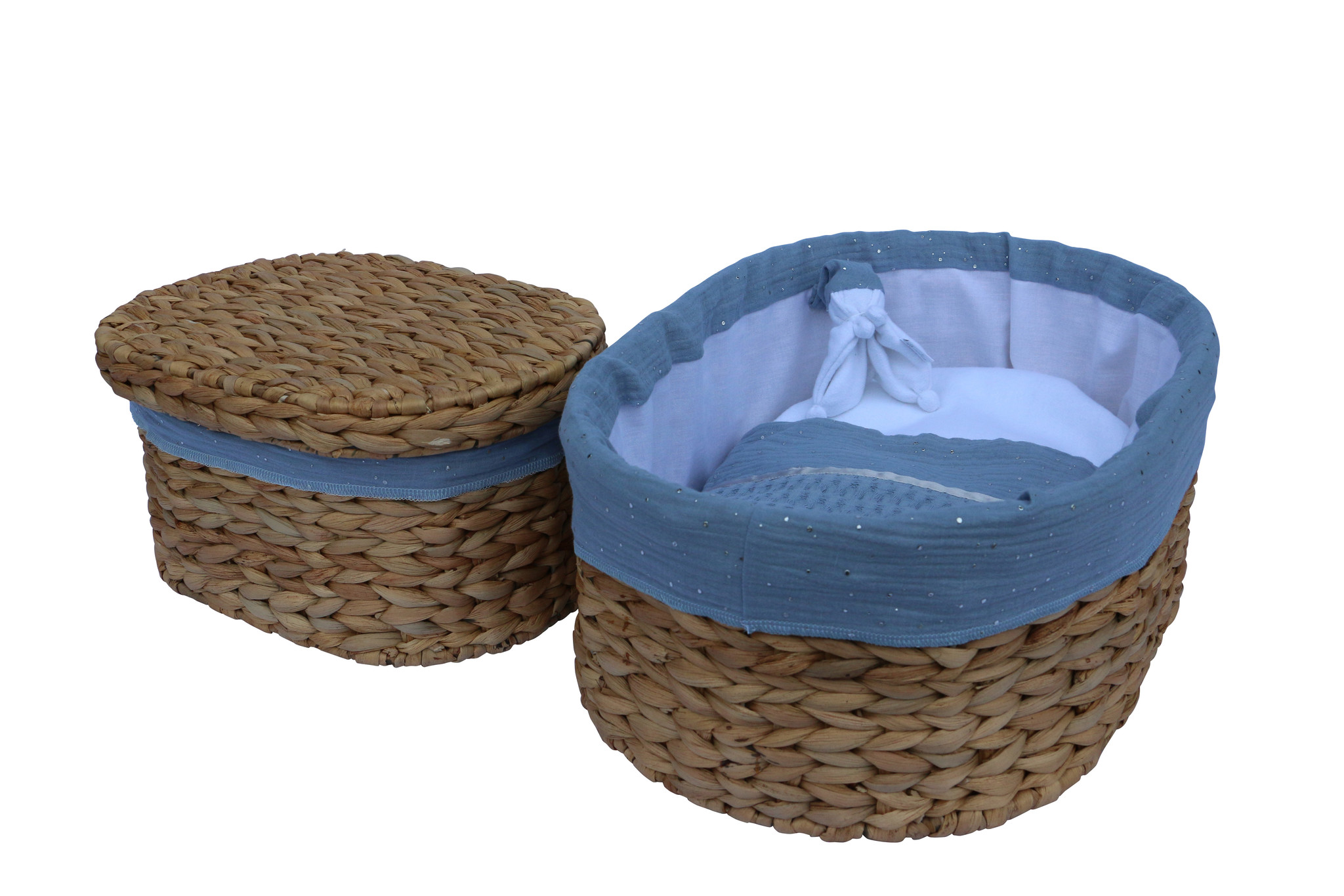 Waterhyacint Nolana