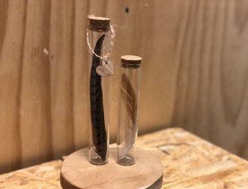 Glazen buizen met veren