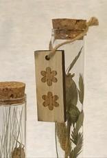 Glazen buizen met naturel droogbloemen