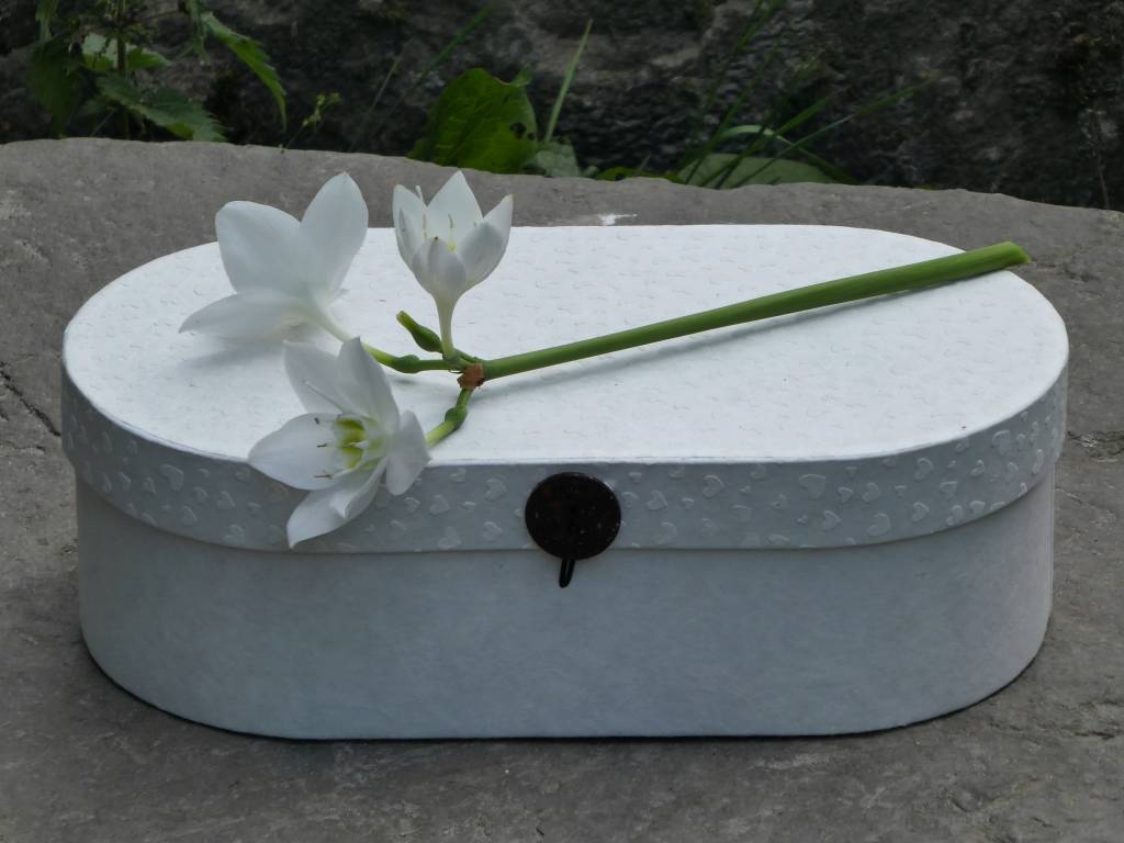 Afscheidsbox - L - Papver