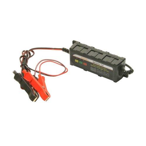 Fluxon Acculader 6V/12V