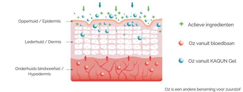 Hoe wordt de zuurstof van KAQUN opgenomen door de huid?