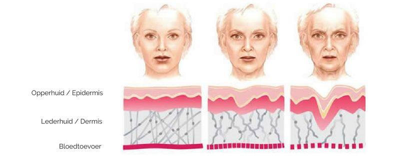 Welke rol heeft zuurstof bij huidveroudering?