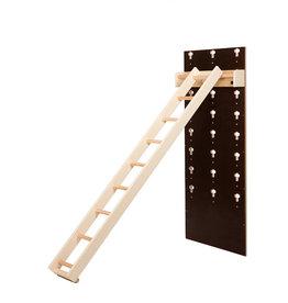 CS 3010021 - Ladder Kids