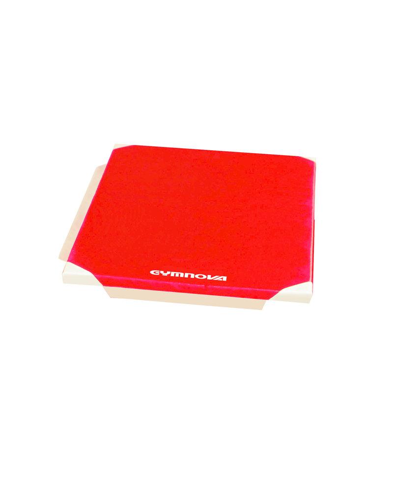 Gymnova Ref. 6102 - Turnmatje  200 x 100 x 4  cm met velcro en versterkte hoeken