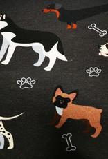 Hund grau - schwarz