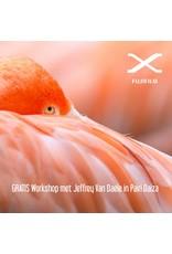 Fujifilm WIN GRATIS workshop met Jeffrey naar Pairi Daiza