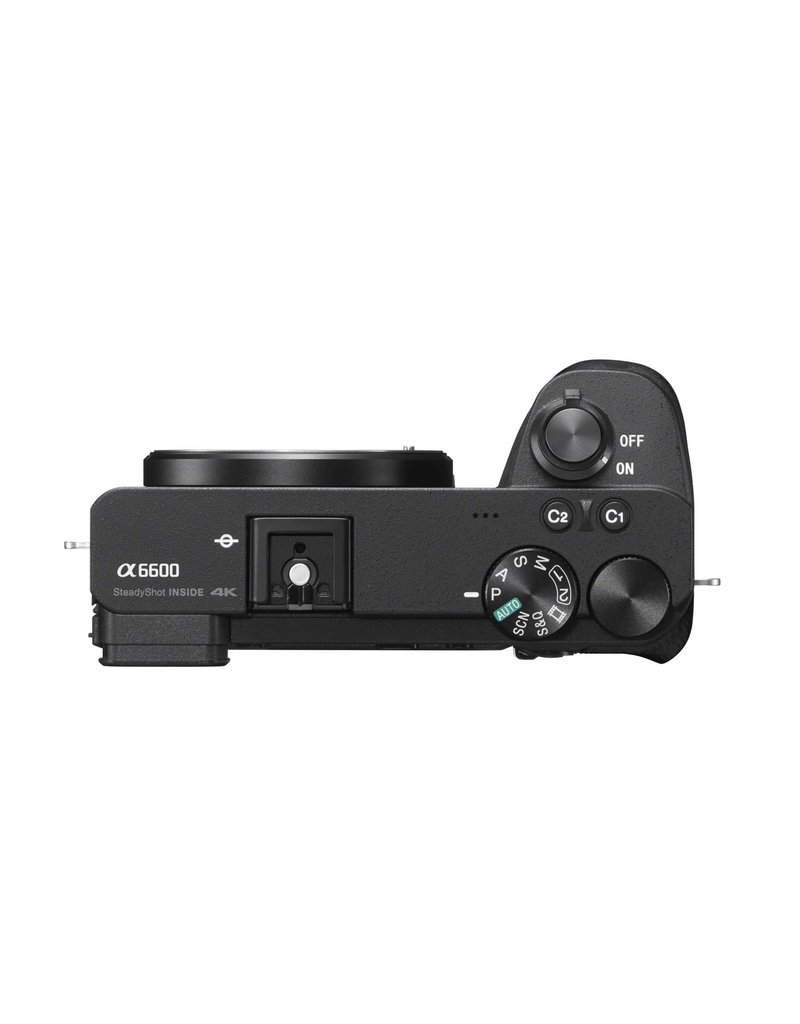 Sony Sony A6600 body