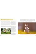 Birdpix Praktijkboek Natuurfotografie NXT LVL