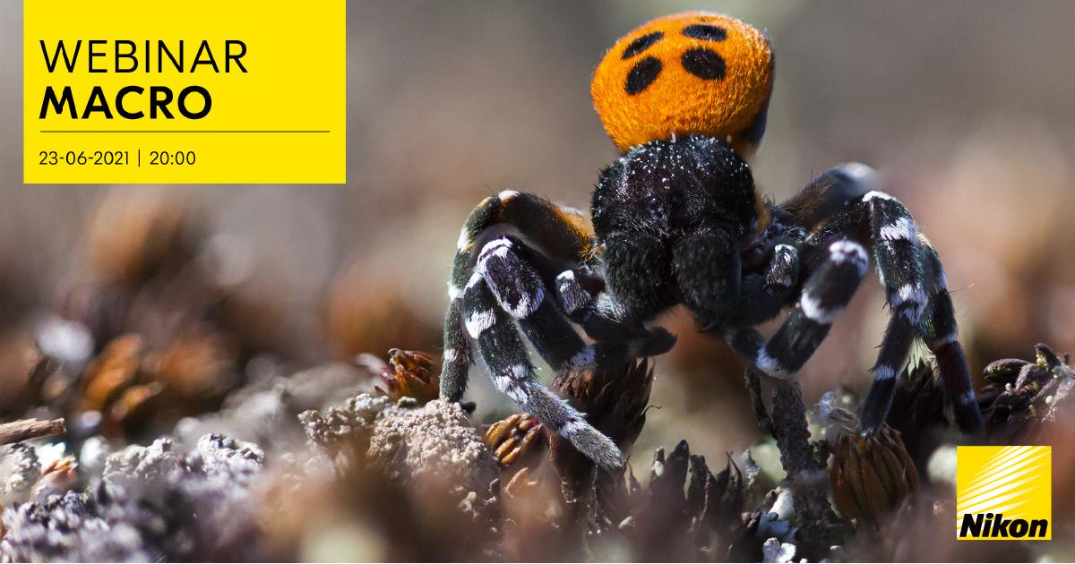Nikon Webinar Macro-fotografie