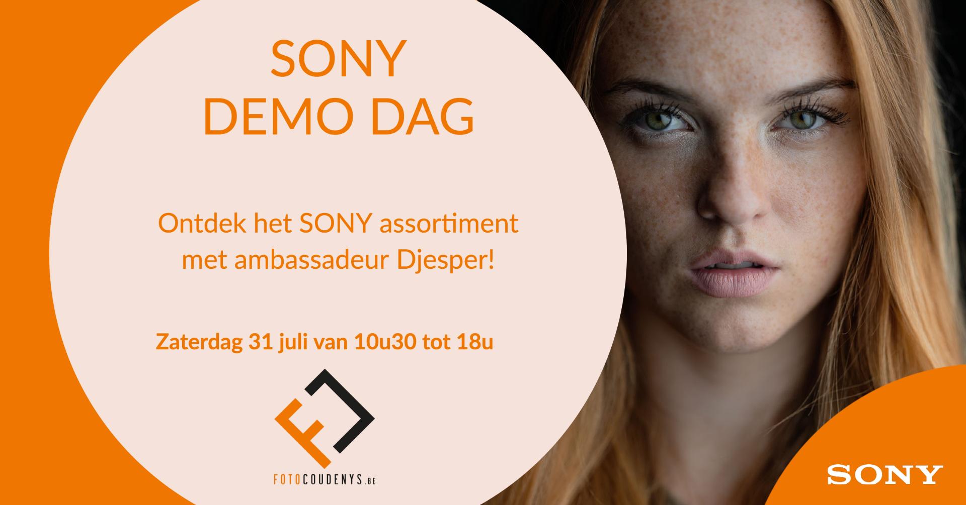 Sony Demo Dag