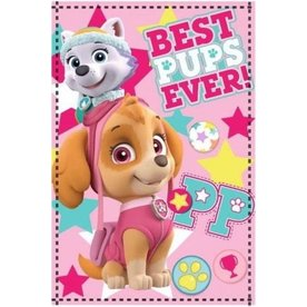 Worlds Apart, Disney  Paw Patrol Plaid Roze, Skye