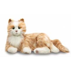 Interactieve Kat voor ouderen, Oranje