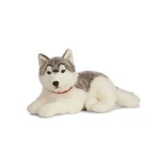 Giant Husky Knuffel groot, grijs met wit