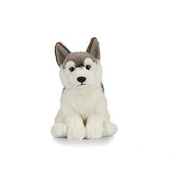 Husky Knuffel, 24 cm
