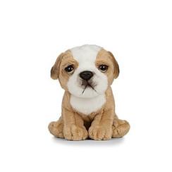 Knuffel English Bulldog Puppy