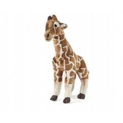 Knuffel Giraffe, groot