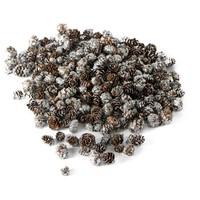 Vermont Mini Pinecone Silver