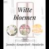 Tap Parfum LA 137 TAPPARFUM - Fles met verstuiver 30ML
